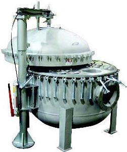 Maxiline multiple bag filter vessels