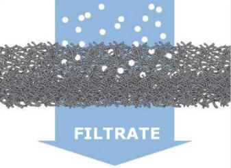 Filtrate
